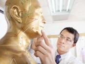 Akupunkturtherapeut